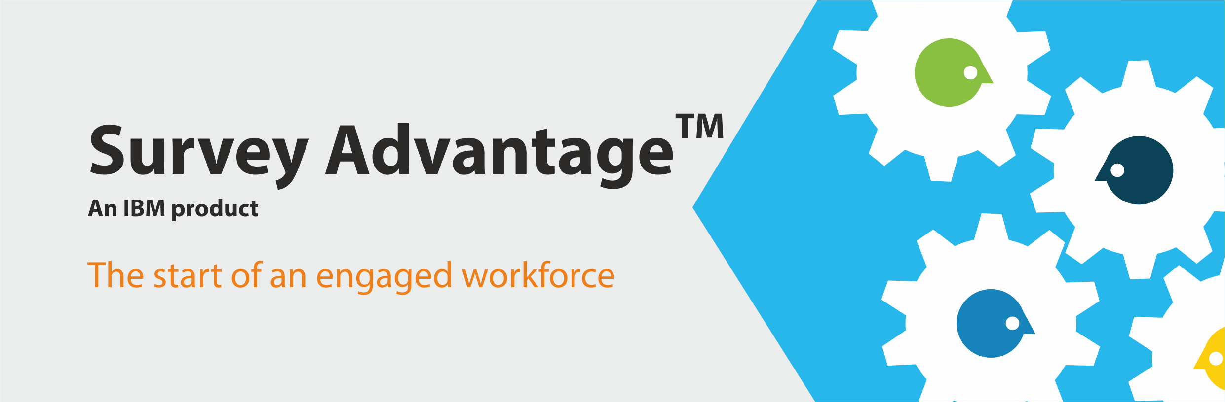 IBM survey advantage